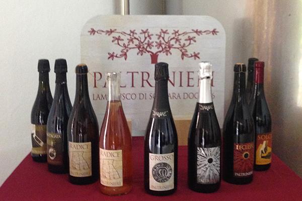 I vini di Paltrinieri