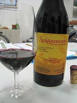 Lo Spigamonte della Cantina di Negrar